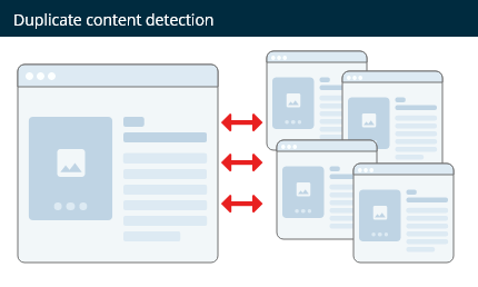 Detect duplicate content within a website